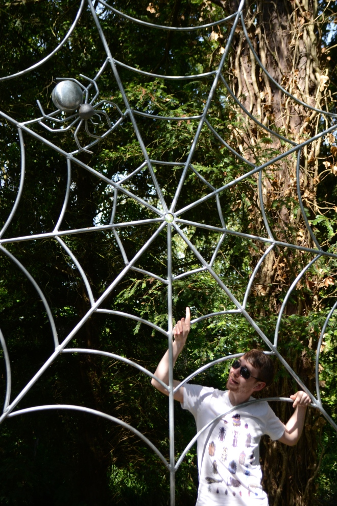 Caught in a web of wildlife.