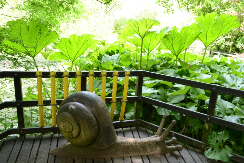 Giant Leaves, Giant Snail!