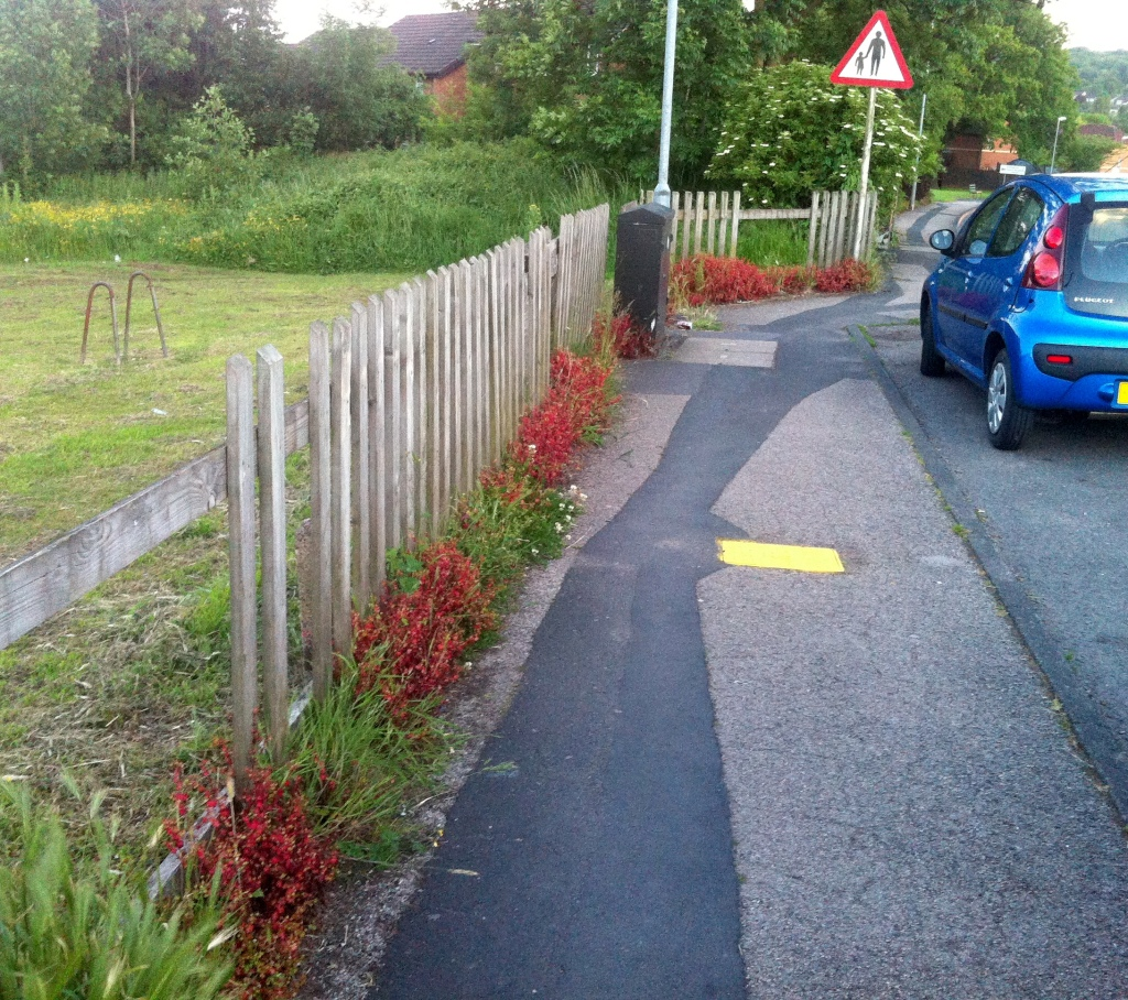 It'd be really cool, if this whole path was lined with the red plants!