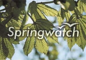 #Springwatch